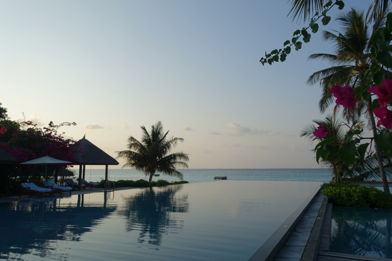 Four Seasons Maldives at Landaa Giraavaru Review - Olympic Sized Infinity Pool