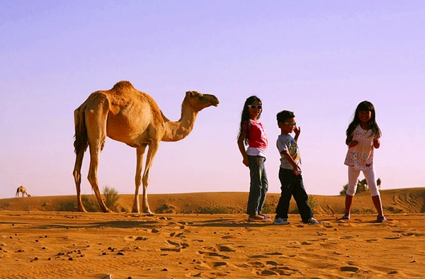 Kids with camel, Dubai