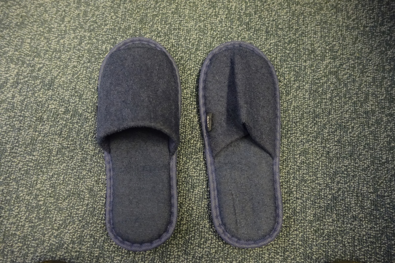 Blue Slippers, ANA First Class Review