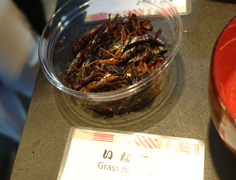 Grasshoppers for Sale Outside Tsukiji Fish Market, Tokyo