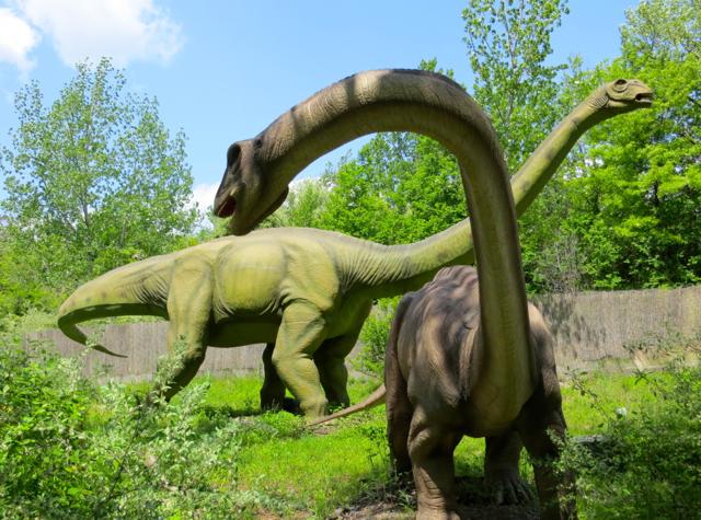 Walking with dinosaurs ankylosaurus