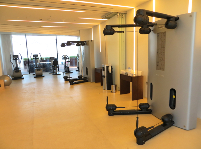Yas Viceroy Abu Dhabi Hotel Review - Fitness Center Machines
