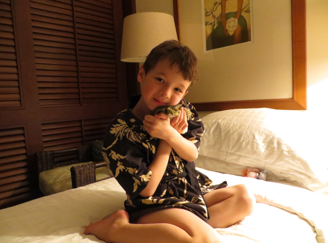 Four Seasons Hualalai Review - With New Turtle Friend