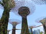 Square_gardens_by_the_bay_review-supertrees_and_ocbc_skyway_