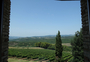 Square_castello_banfi_winery-vineyards-view_from_lenoteca_wine_shop