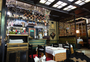 Square_review-cat_cafe-st_petersburg_russia_