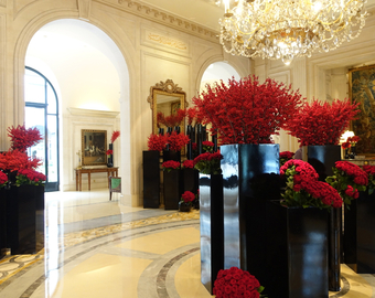 Featured_le_cinq_review-four_seasons_paris-lobby_flowers_by_jeff_leatham