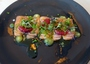 Square_perry_st_nyc_restaurant_review-salmon_sashimi_with_blood_orange