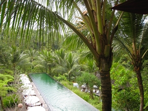 Medium_komaneka_bisma_bali_hotel_review-pool