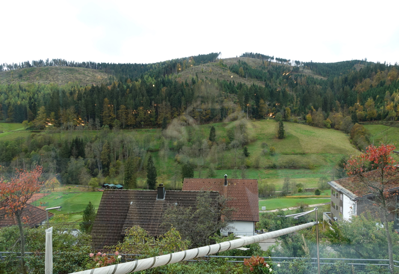 View from Silberberg Restaurant, Hotel Traube Tonbach