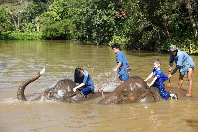 Elephant Drenching Me, Mahout Experience, Anantara Golden Triangle