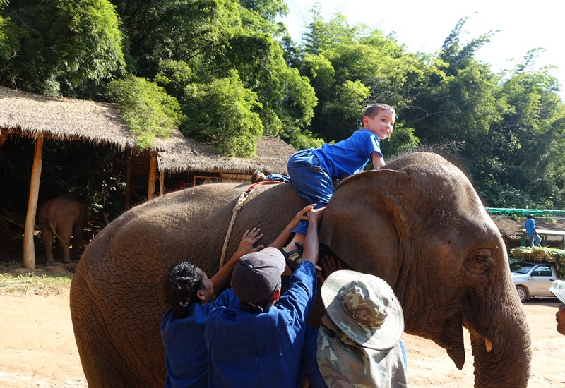Elephant Mahout Training Thailand--Learning to Get Up on an Elephant