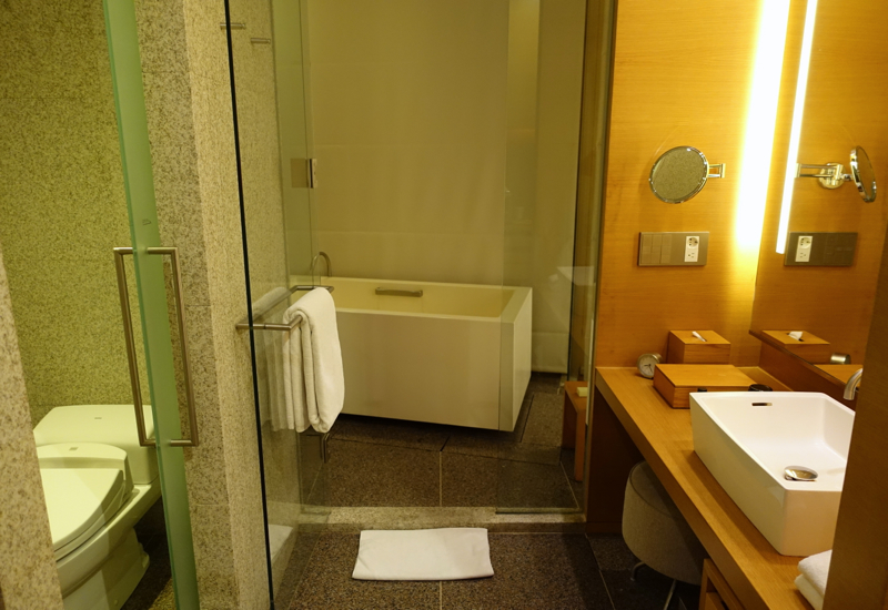 Review-Park Hyatt Seoul - Park Deluxe Room Bathroom