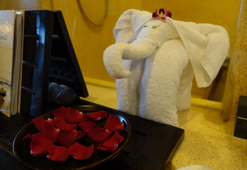 Towel Elephant, Anantara Golden Triangle Elephant Camp and Resort