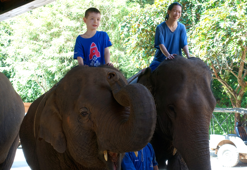 End of our Mahout Experience, Anantara Golden Triangle