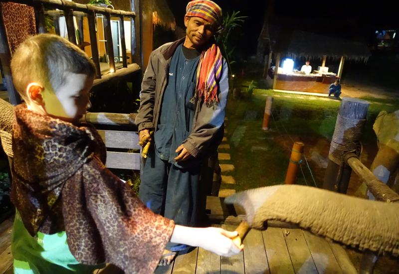 Munchkin Feeding Sugar Cane to Elephants, Dining by Design