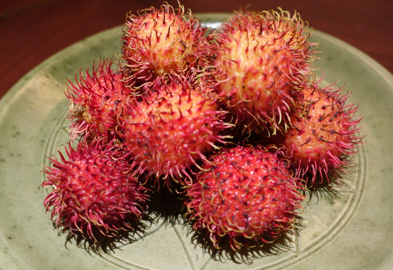 Rambutan Welcome Amenity, Park Hyatt Siem Reap Review