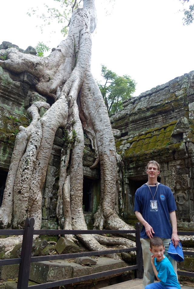 Tree Roots Taking Back Ta Prohm, Temple in the Jungle