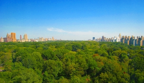 The Ritz-Carlton Central Park: 3rd Night Free