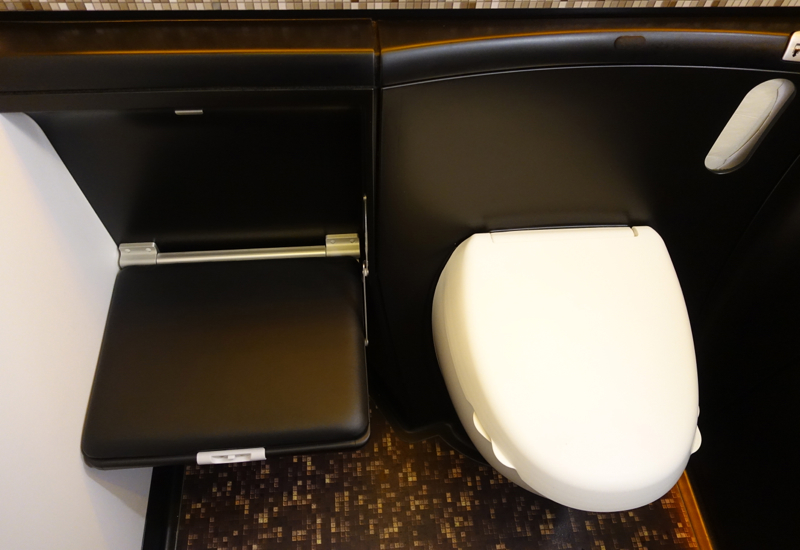 Etihad First Class Review 787-9 - Bathroom Fold Down Seat