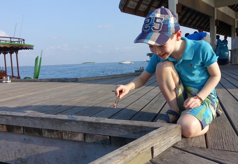 Four Seasons Maldives Landaa Giraavaru Kids Club: Feeding Fish