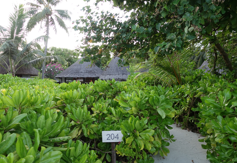 Beach Entrance to Beach Pavilion 204, Four Seasons Kuda Huraa