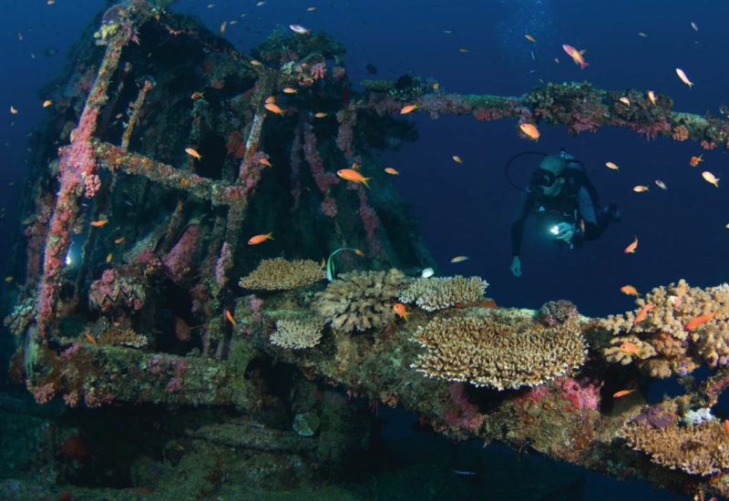 Four Seasons Kuda Huraa Things to Do-Wreck Diving