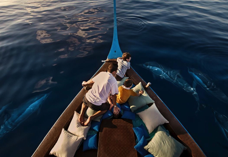 Dolphin Watching Cruise, Four Seasons Maldives at Kuda Huraa