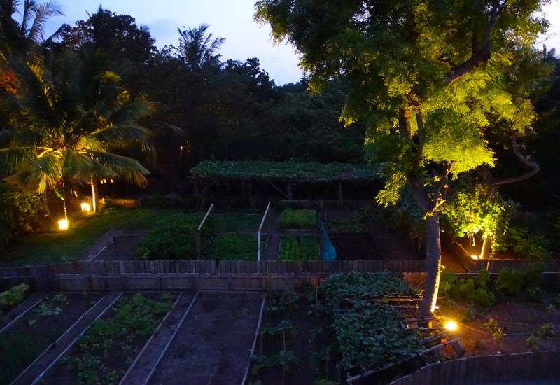 Organic Gardens, Fresh in the Garden, Soneva Fushi