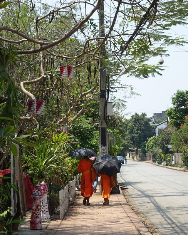 Walking Around Luang Prabang