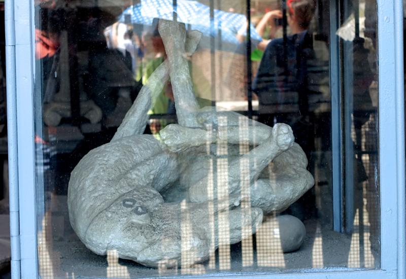 Plaster Cast of a Dog Victim of Pompeii