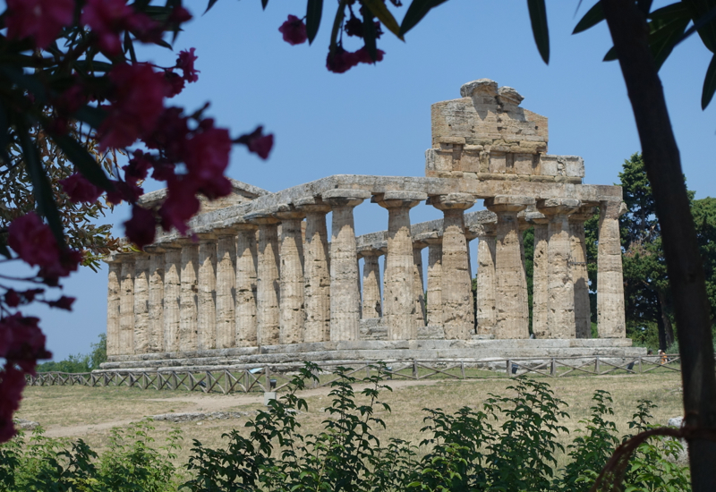 Paestum Review-Temple to Athena