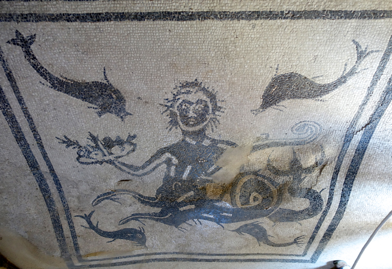 Herculaneum: Mosaic of Neptune and Dolphins, Tepidarium in Public Baths