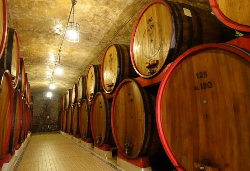 Castello Banfi Winery Tour: Giant French Oak Barrels