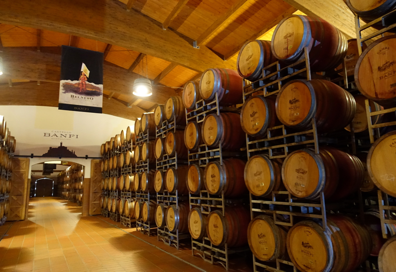 Castello Banfi Winery Tour: Aging in French Oak Barrels