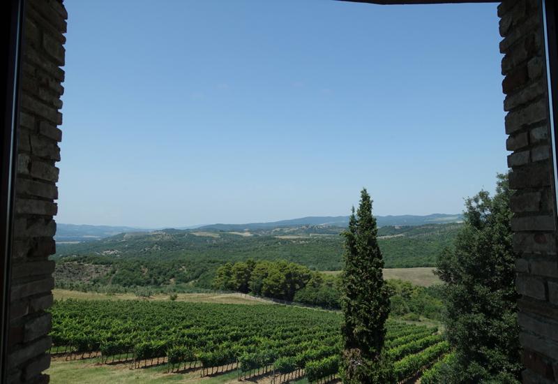 Castello Banfi Winery Tour and Wine Tasting at L'Enoteca