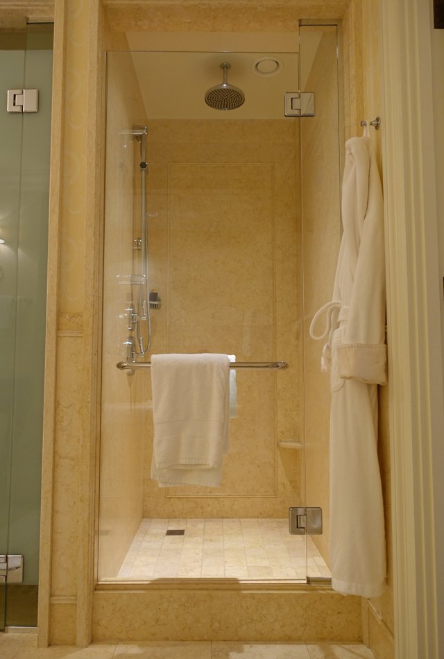 Rain Shower, Four Seasons St. Petersburg Russia Review