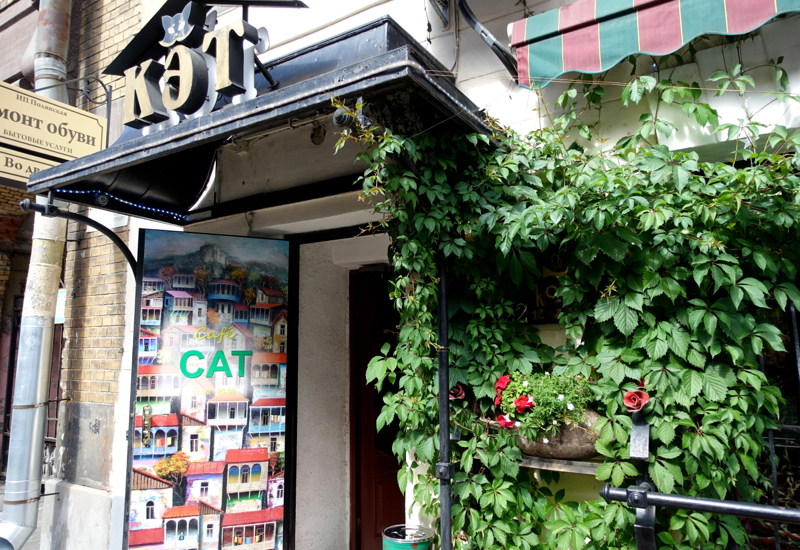 Review-Cat Cafe St. Petersburg Russia, Stremyannaya Ulitsa 22