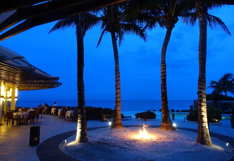 Rosewood Mayakoba Menus and Dining Review-Palm Trees at Punta Bonita