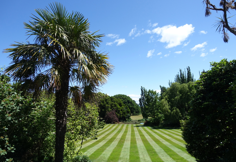 Otahuna Lawn and Trees Near Christchurch, New Zealand