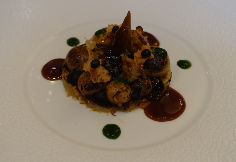 Gratinated Onions, Le Cinq Restaurant Review, Four Seasons Paris