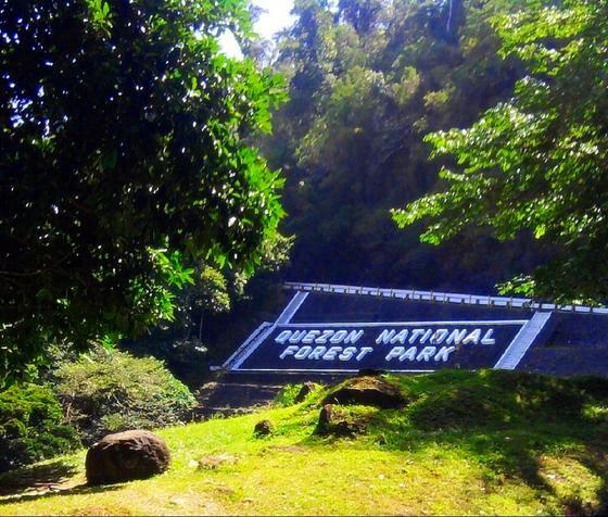 Quezon National Forest Park, Philippines