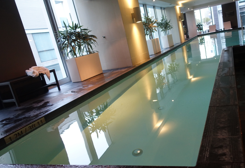 Swimming Pool, Sofitel Auckland Review