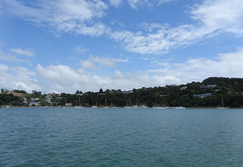 View from Paihia Car Ferry on the Way to Eagles Nest, New Zealand