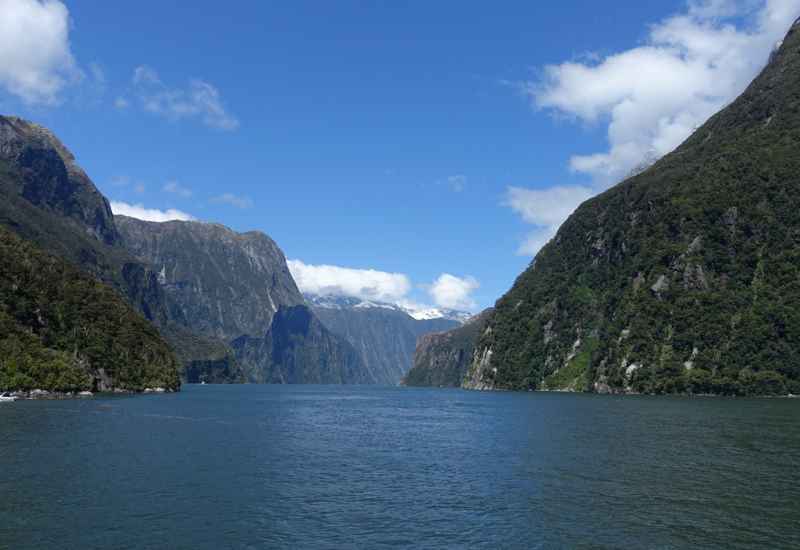 Milford Sound Flight and Cruise with Real Journeys