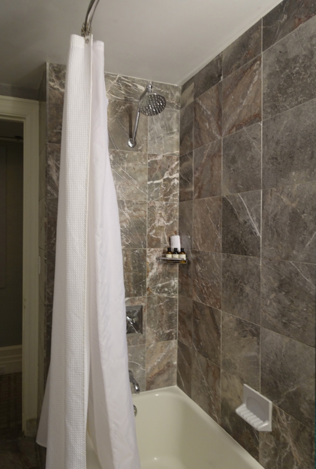 Signature Gold King Bathtub-Shower Combo, Fairmont Copley Plaza Review
