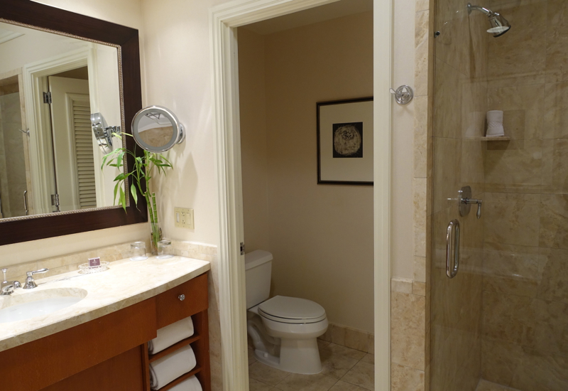 Separate Toilet Chamber and Shower Stall, Ritz-Carlton Boston Review