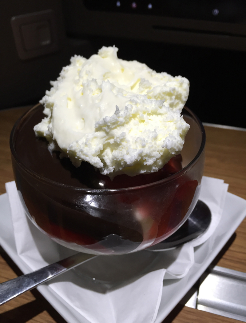 Hot Fudge Sundae for Dessert, American A321 First Class Review