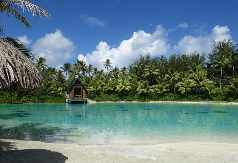 Lagoon, InterContinental Bora Bora Thalasso Review