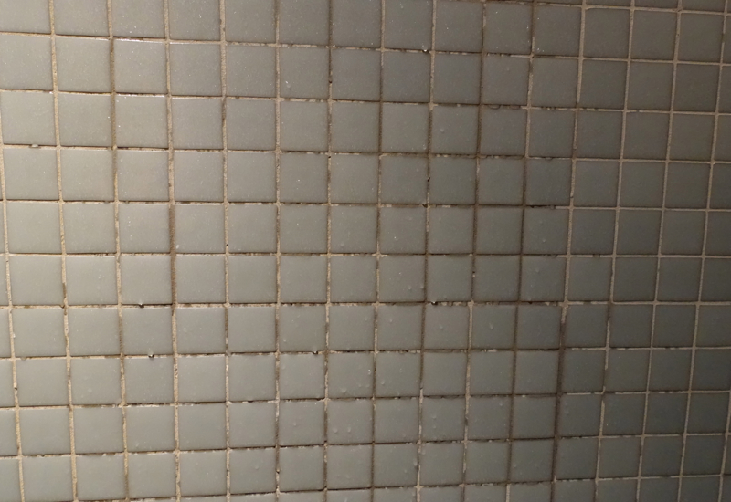Mildew in Grout of Shower, InterContinental Bora Bora Review